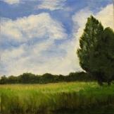 Blue Sky and Field (by CJ Schwarz)