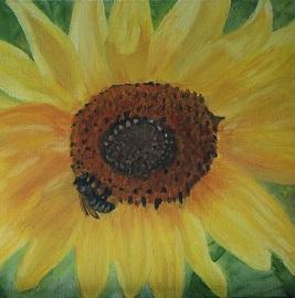 Bee Food (by CJ Schwarz)